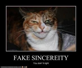 FAKE SINCEREITY