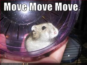 Move Move Move