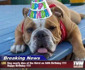 Breaking News - Dog nearly dies of the thirst on 50th Birthday !!!!! Happy Birthday !!!!!
