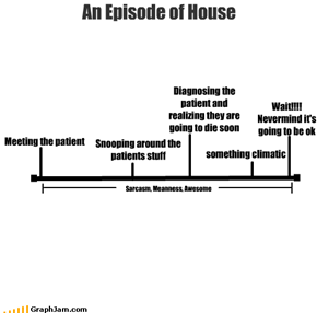 An Episode of House