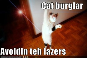 Cat burglar  Avoidin teh lazers