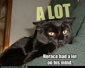 Horace had a lot on his mind.