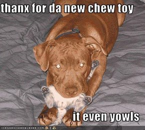 thanx for da new chew toy  it even yowls