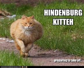 HINDENBURG KITTEH