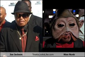 Joe Jackson Totally Looks Like Nien Nunb