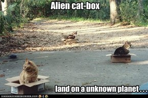 Alien cat-box