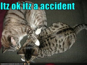 Itz ok itz a accident