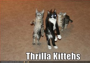 Thrilla Kittehs