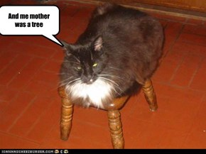 And me mother was a tree