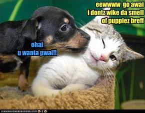 eewwww  go awai  i dontz wike da smell of puppiez breff