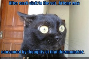 After each visit to the vet,  Arlene was  consumed by thoughts of that thermometer.