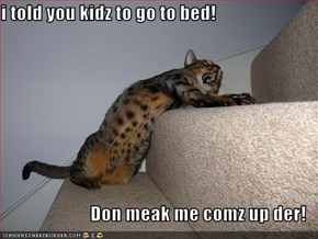 i told you kidz to go to bed!  Don meak me comz up der!