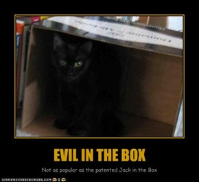 EVIL IN THE BOX
