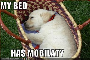 MY BED        HAS MOBILATY
