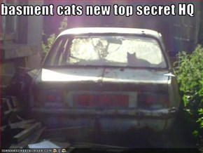 basment cats new top secret HQ