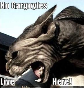 No Gargoyles   Live                       Here!
