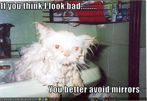 If you think I look bad.........  You better avoid mirrors.