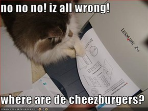no no no! iz all wrong!  where are de cheezburgers?