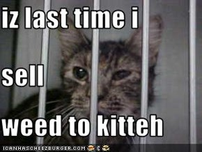 iz last time i sell weed to kitteh