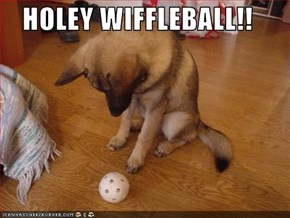HOLEY WIFFLEBALL!!