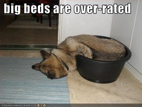 big beds are over-rated