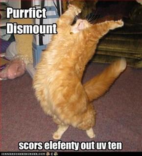 Purrfict  Dismount