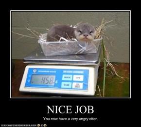 NICE JOB