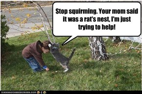 Stop squirming. Your mom said it was a rat's nest, I'm just trying to help!