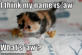 I think my name is 'aw'  What's 'aw'?