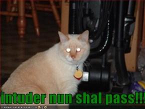 intuder nun shal pass!!!