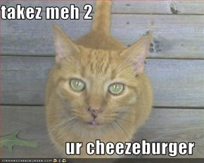 takez meh 2   ur cheezeburger
