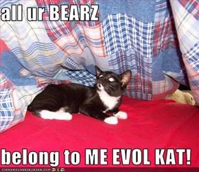 all ur BEARZ  belong to ME EVOL KAT!