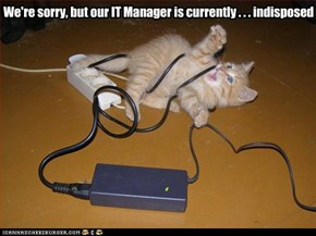 We're sorry, but our IT Manager is currently . . . indisposed