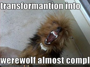 transformantion into   werewolf almost complete