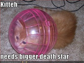 Kitteh  needs bigger death star