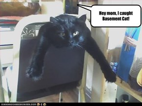 Hey mom, I caught Basement Cat!