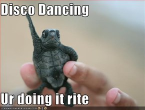 Disco Dancing  Ur doing it rite