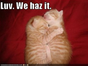 Luv. We haz it.