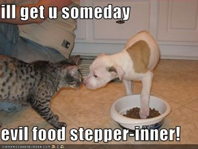 ill get u someday  evil food stepper-inner!