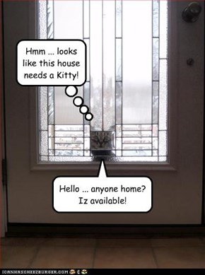 Hello ... anyone home? Iz available!
