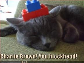 Charlie Brown! You blockhead!