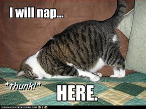 I will nap...