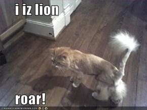 i iz lion       roar!