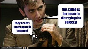 this kitteh is the anser to distroying the Dalecks!