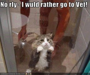 No rly - I wuld rather go to Vet!