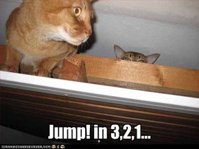 Jump! in 3,2,1...
