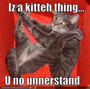 Iz a kitteh thing...  U no unnerstand