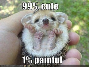 99% cute              1% painful