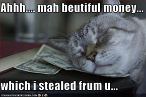 Ahhh.... mah beutiful money...  which i stealed frum u...