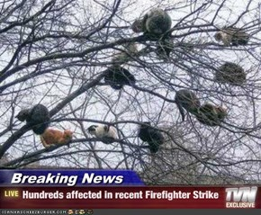 Breaking News - Hundreds affected in recent Firefighter Strike